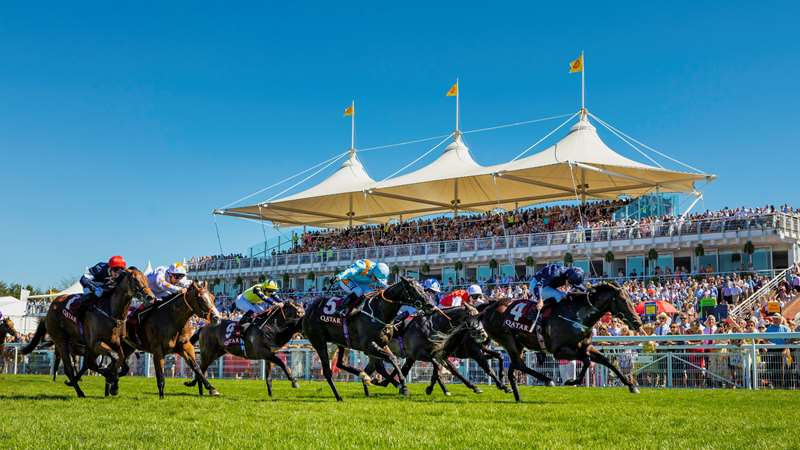 Qatar Goodwood Festival | 'Glorious Goodwood' | Official Website
