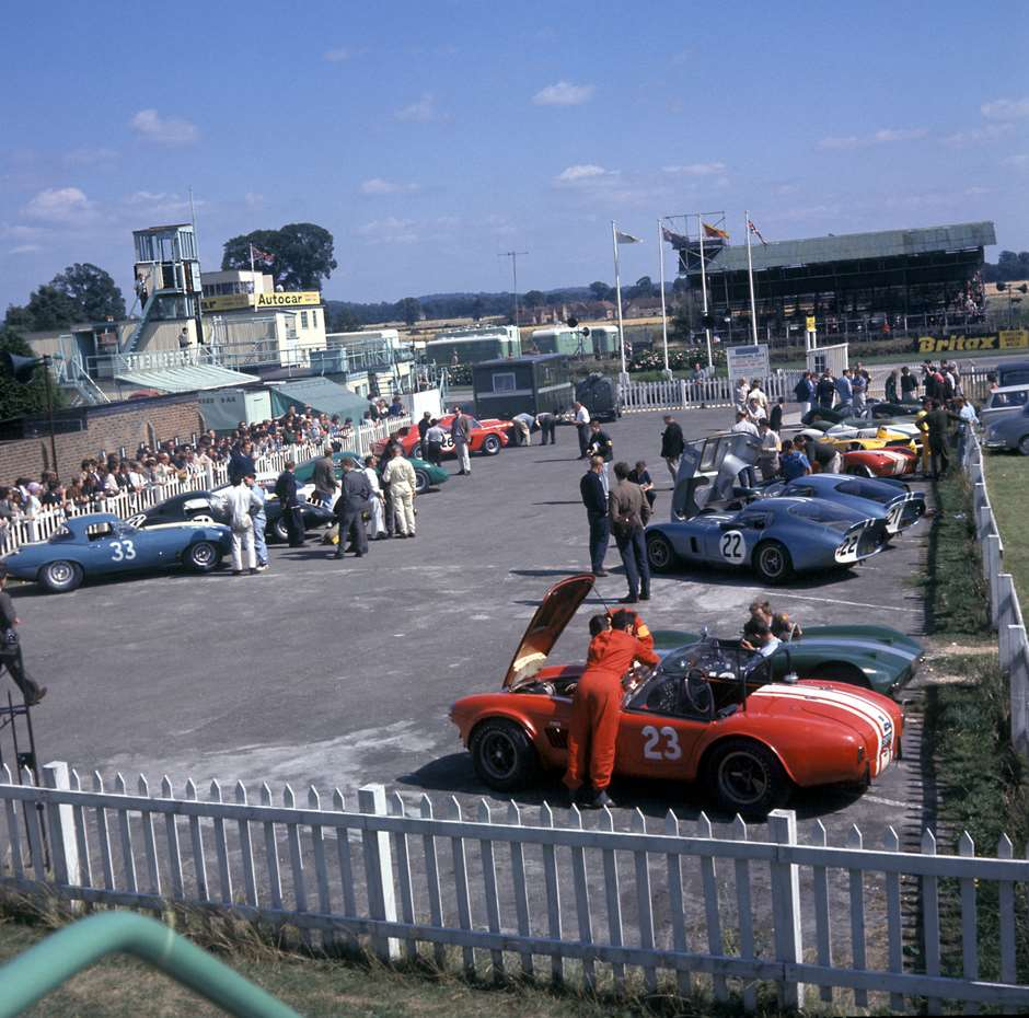 cobra-goodwood-1964